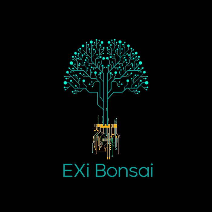 EXI BONSAI - Concerto Dj set